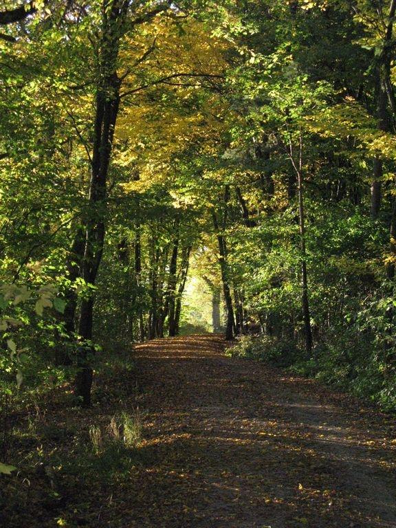 Herbst_Mehlgart